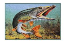 Rohožka Delphin 3D Šťuka - 60x40cm