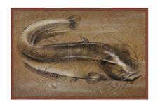 Rohožka Delphin Retro Sumec - 60x40cm